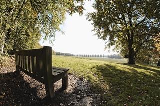 Shobdon, Herefordshire.