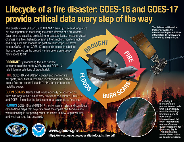 Lifecycle of a Fire Disaster