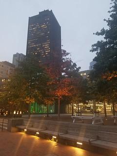 10-16-2019: Warm Autumn glow. Boston, MA