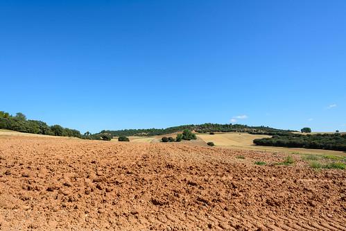 Tierras de labor en Centenera de Andaluz
