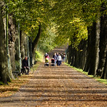Riverside walk in Autumn