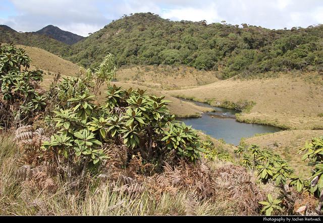Horton Plains NP, Sri Lanka