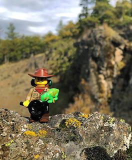 LEGO Collectible Minifigures Series 19 : Jungle Explorer