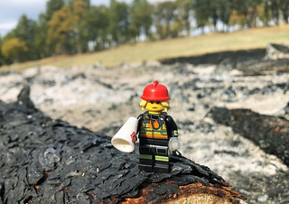 LEGO Collectible Minifigures Series 19 : Fire Fighter