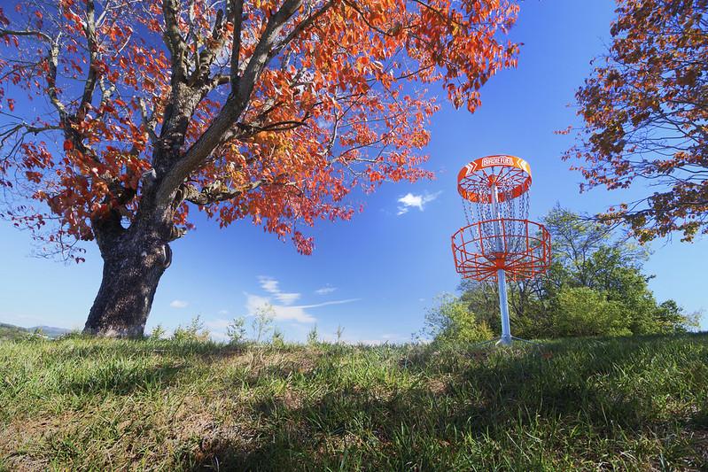 autumn disc golf