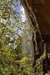 Waterfall on Emerald Pools Trail