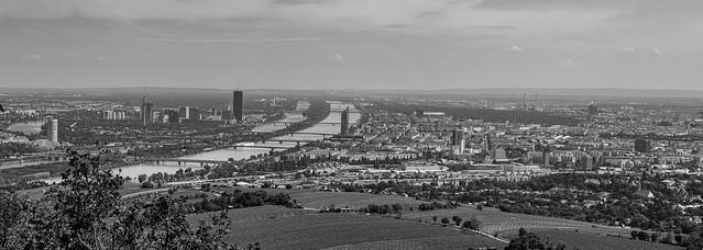 Panorámica de Viena en Blanco y negro (1)