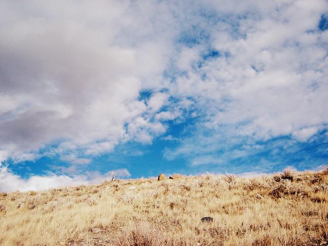 It is prairie, open prairie.
