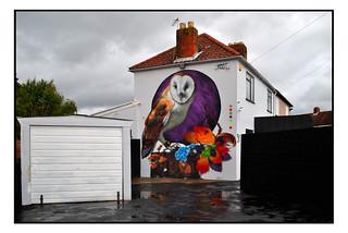 STREET ART BARN OWL by ASPIRE.