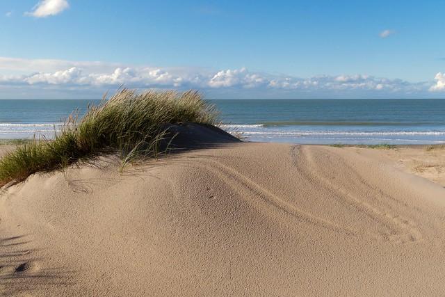 Dunes vierges à Calais