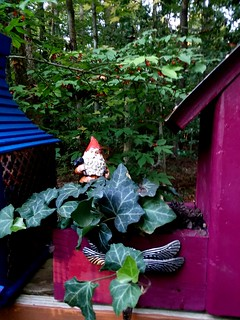 Gnome on the planter bird house.