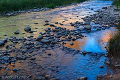 Zion National Park-9