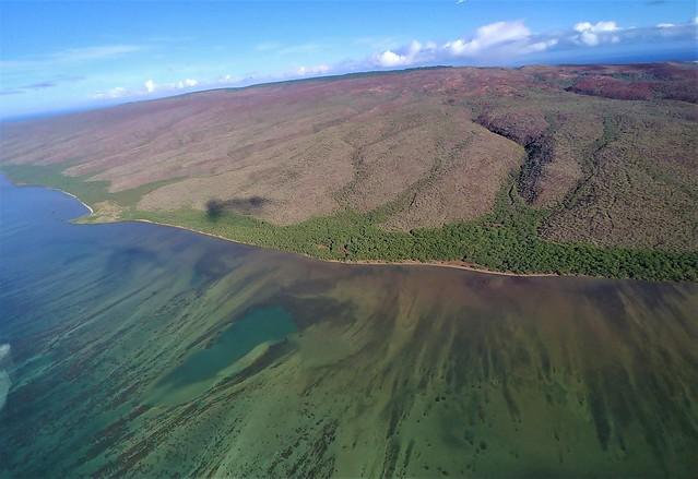 Molokai Island Reef