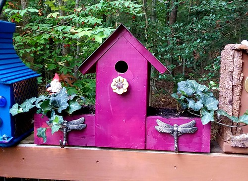 New Bird house planter.