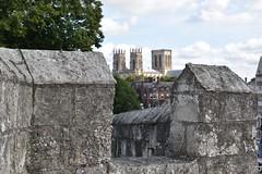 Murralas de York