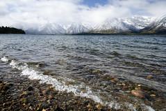 DSC_0124 Jackson Lake