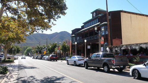 191012 066 Temecula - Old Town Main Street, Platanus occidentalis Western Sycamore