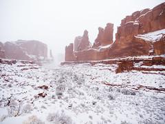 Park Ave Snowstorm