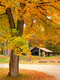 The Quaker picnic area
