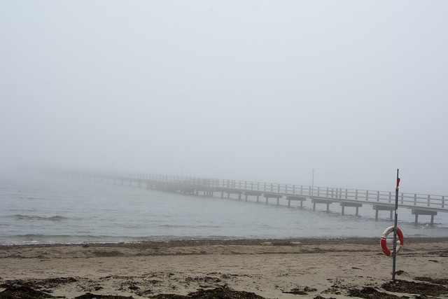 A foggy day at the beach