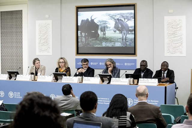 CFS 46 Side Event: SE133 Pastoral mobility and working animal welfare in a changing landscape