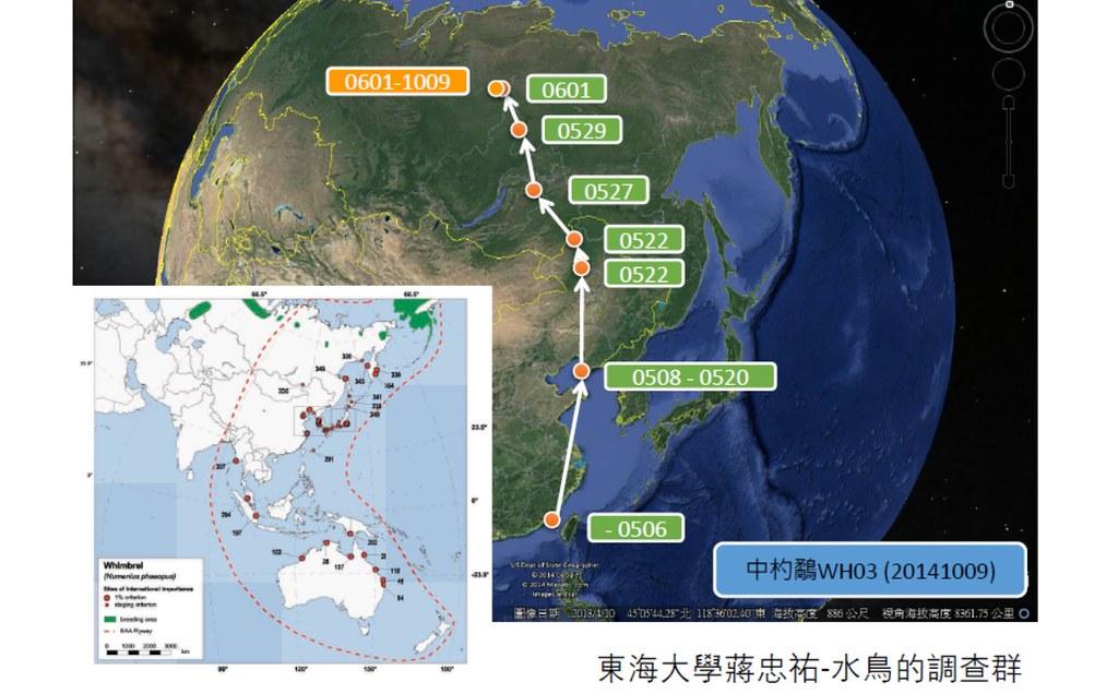 透過繫放取得的鳥類遷徙資料,往往一兩天就是幾百公里遠的距離。(東海大學蔣忠祐研究調查)