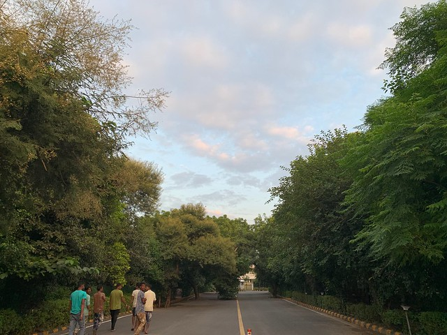 City Nature - Sky Watching, New Moti Bagh