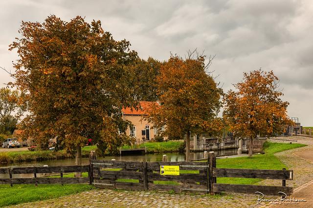 Autumn Colors, Dirksland SAS (HFF)