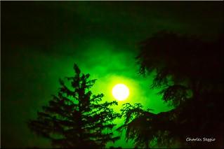 Vision nocturne  ......