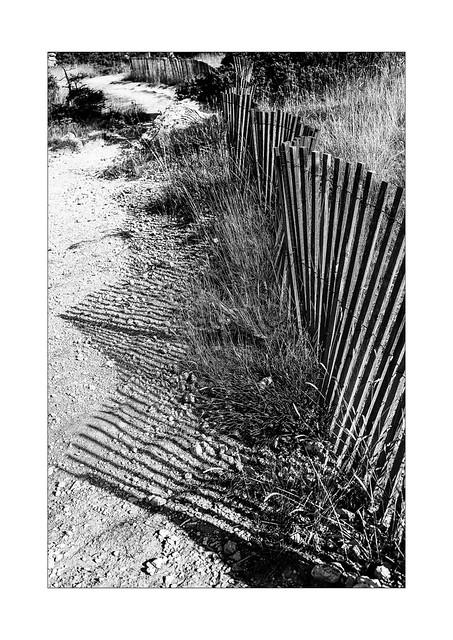 fan fence