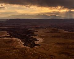 Canyonlands National Park   |   Buck Canyon Overlook