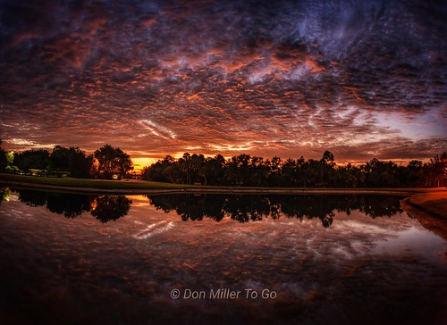 fireinthesky sky skyscape skycandy skypainter d810 reflections lakes sunriselovers sunrise bluehour myflorida