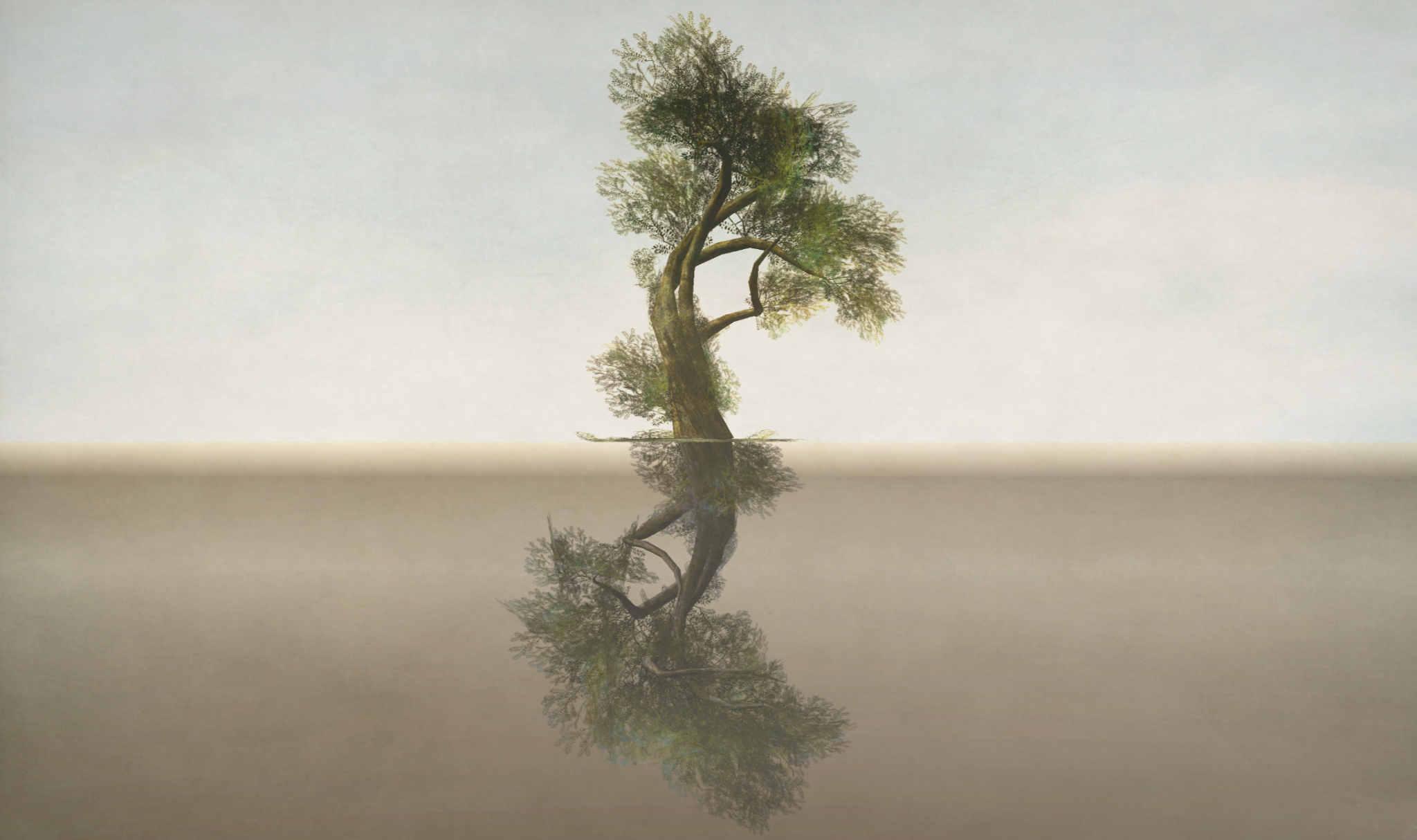 Solitudes 3, by Melusina Parkin