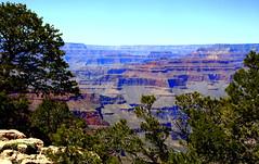 Grand Canyon - Grand Canyon National Park, Arizona