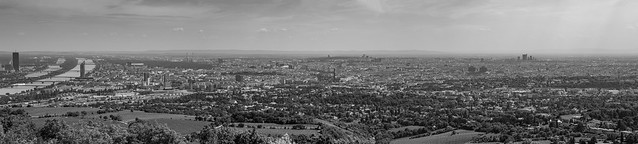 Panorámica de Viena en Blanco y negro (2)