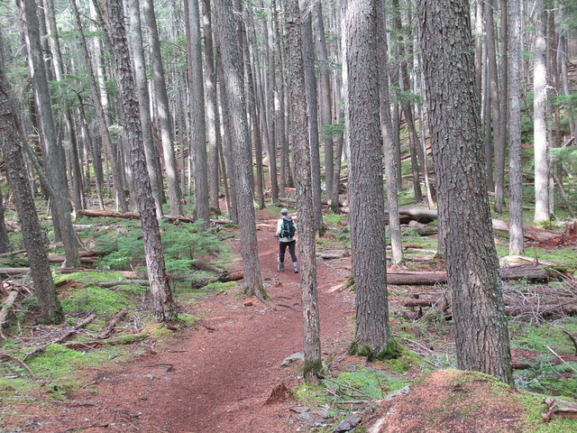 044 - Theresa on Trail fo the Cedars