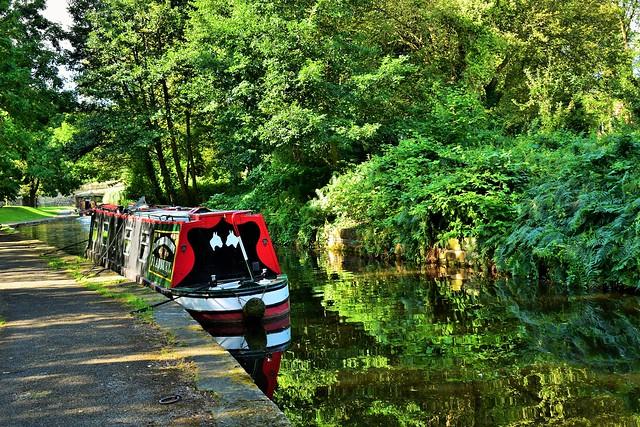 Llangollen Canal Reflections