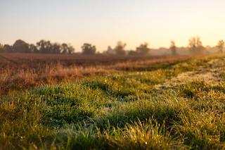 Fallow field at sunrise