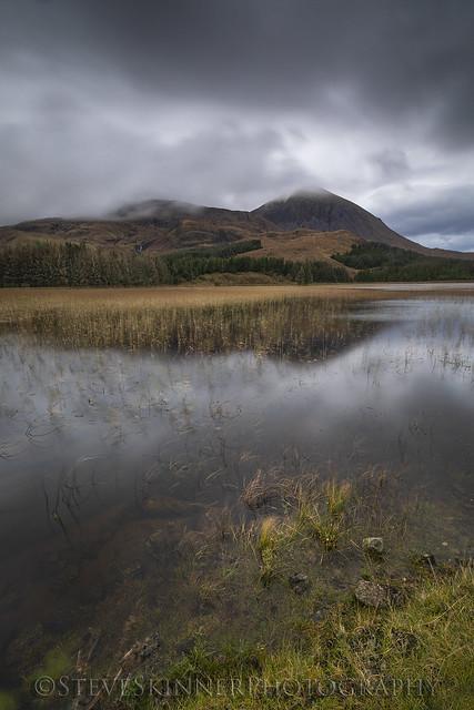 Reed Loch