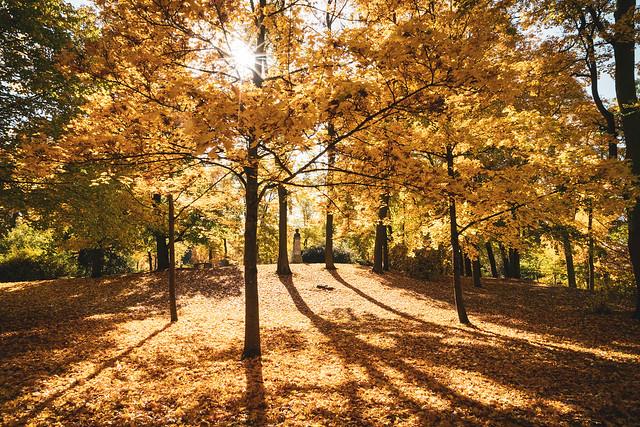 Herbst in Meiningen
