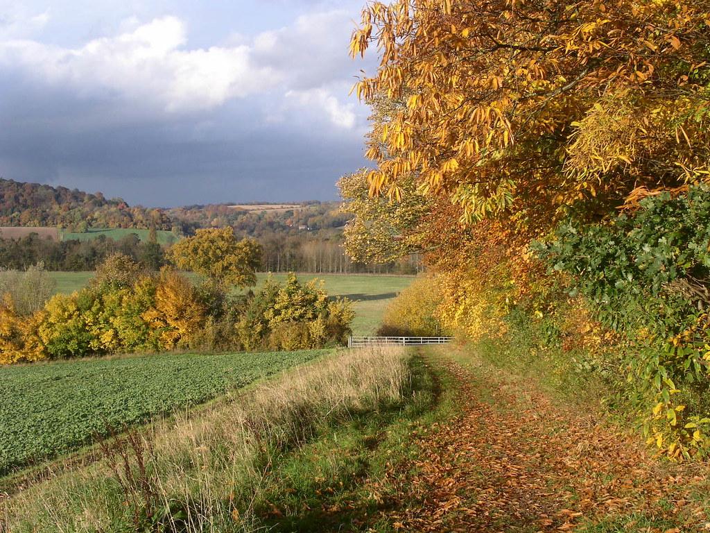 On Remenham Hill Henley via Hambleden walk