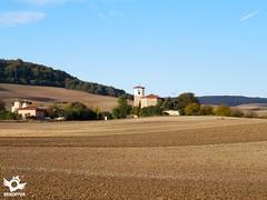 Villambistia, Burgos French Way