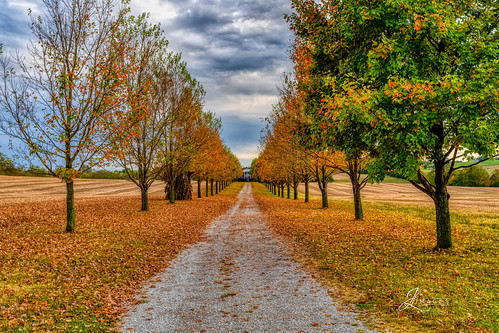 kentucky unitedstatesofamerica nikon d850 lightroom art bokeh lens light landscape happy naturephotography outside nature people white green red black pink skyportrait location architecture building city square squareformat instagramapp shot awesome supershot beauty cute new flickr amazing photo photograph fav favorite favs picture me explore interestingness friends dof sunset sky flower night tree flowers portrait fineart sun clouds travelky fall autumn colors road house bourboncounty
