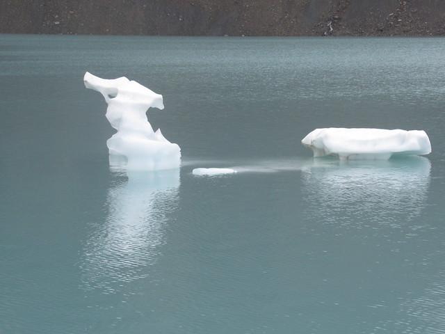 102 - Seahorse Iceberg