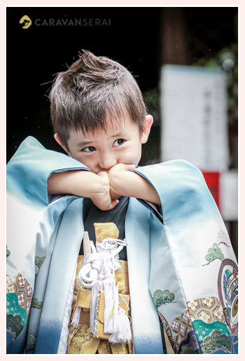 男の子の七五三 ブルーの羽織 金の袴 ヘアスタイル