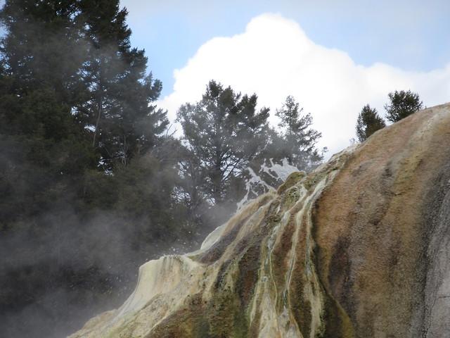 026 - Orange Spring at Mammoth Hot Springs