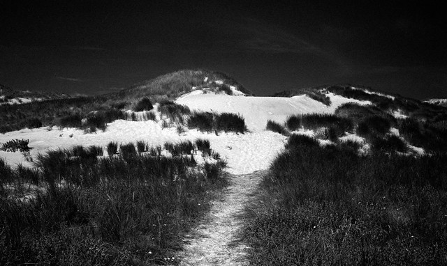 A night in the dunes