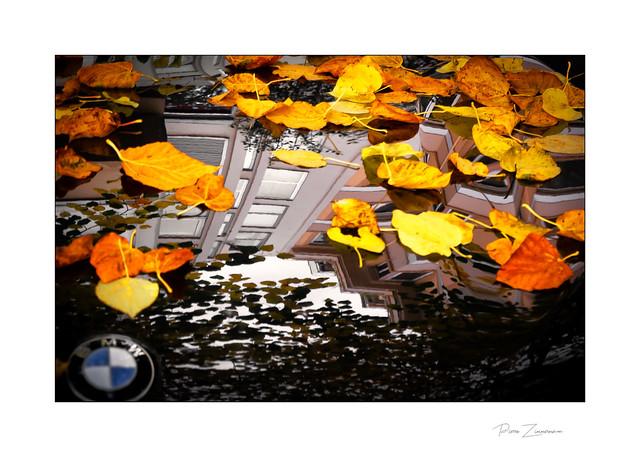 Prestigieux automne !