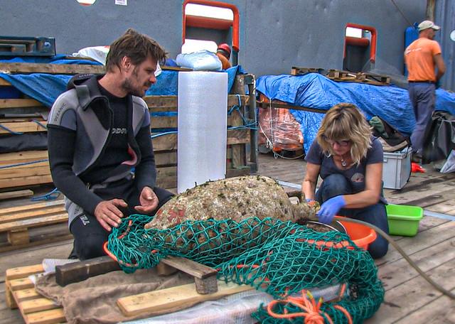 """Αμφορέας από το φορτίο του ναυαγίου των Αντικυθήρων στο κατάστρωμα του ερευνητικού πλοίου """"ΤΥΦΩΝΑΣ"""" δέχεται την φροντίδα της προϊσταμένης του τμήματος συντήρησης της Εφορείας Εναλίων Αρχαιοτήτων Χρύσας Φουσέκη και του Δρ Γεώργιου Κουτσουφλάκη"""