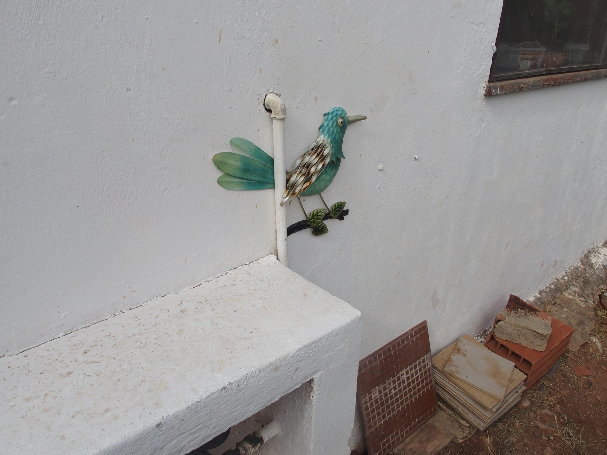 A12 Främmande fågel